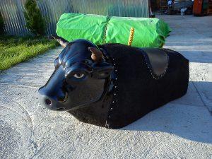 rodeo byk